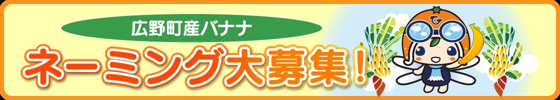 広野町産バナナ ネーミング大募集